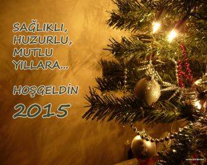 Yeni Yıl Kartı 2015