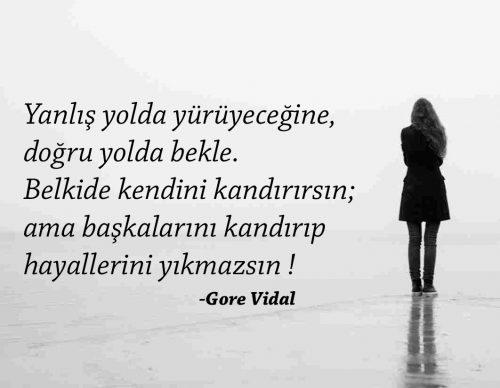 Gore Vidal Anlamlı Sözleri