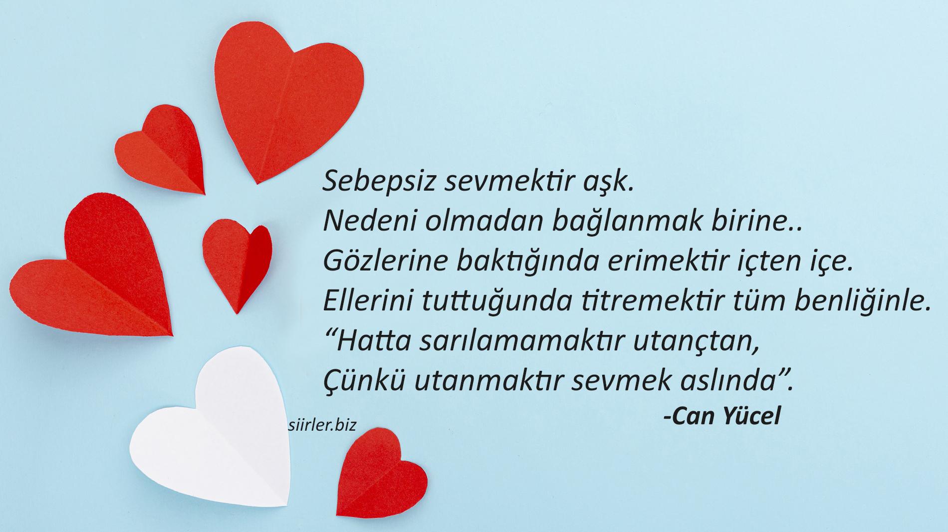 Can Yücel - Sebepsiz sevmektir aşk.
