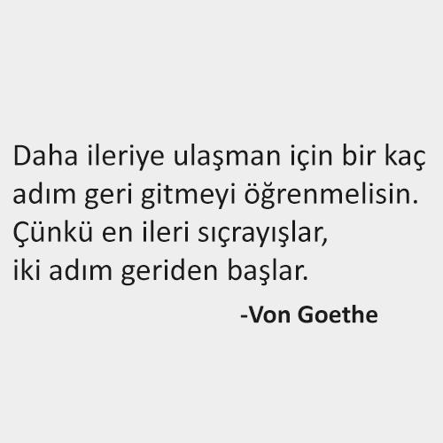 Felsefi Sözler, Von Goethe