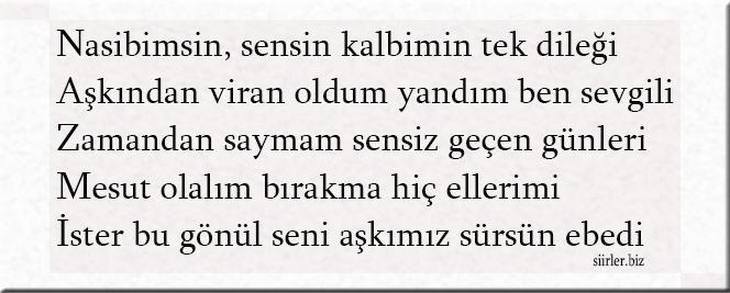 Nazmi akrostiş, Nazmi ismine özel akrostiş şiir