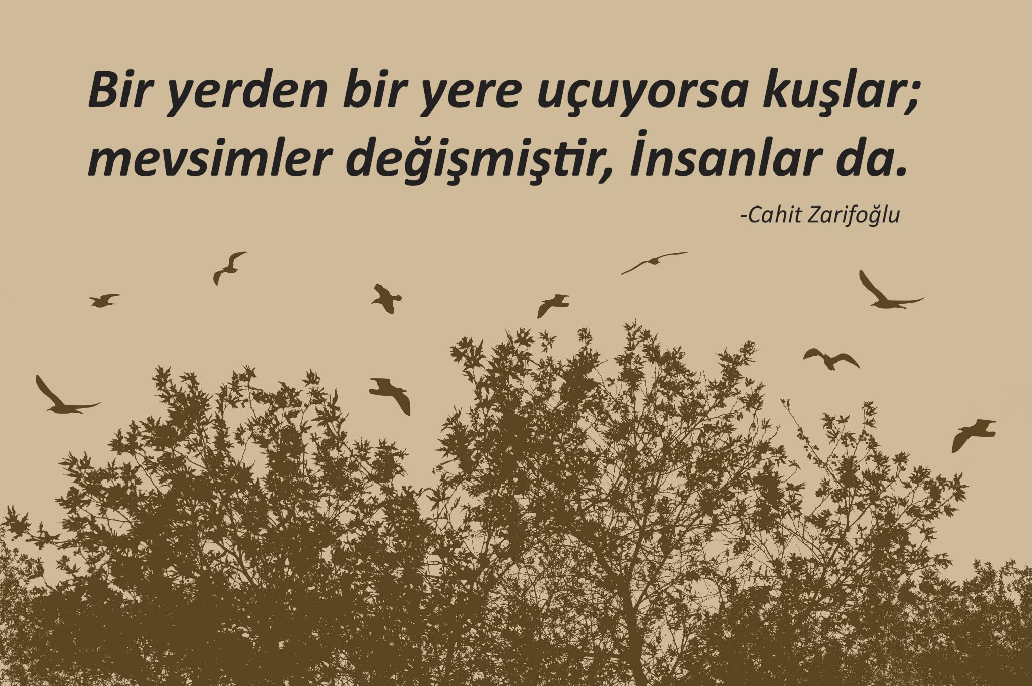 Cahit Zarifoğlu mevsimler